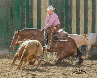 2016 El Rancho Spring Clasic Cutting April 21-24,2016